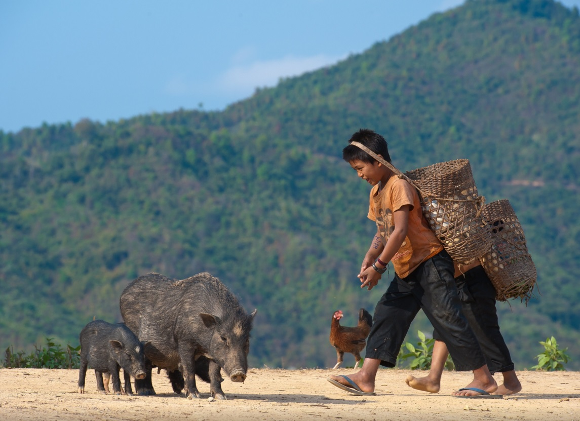 The Key to find a Laos Tour Packages