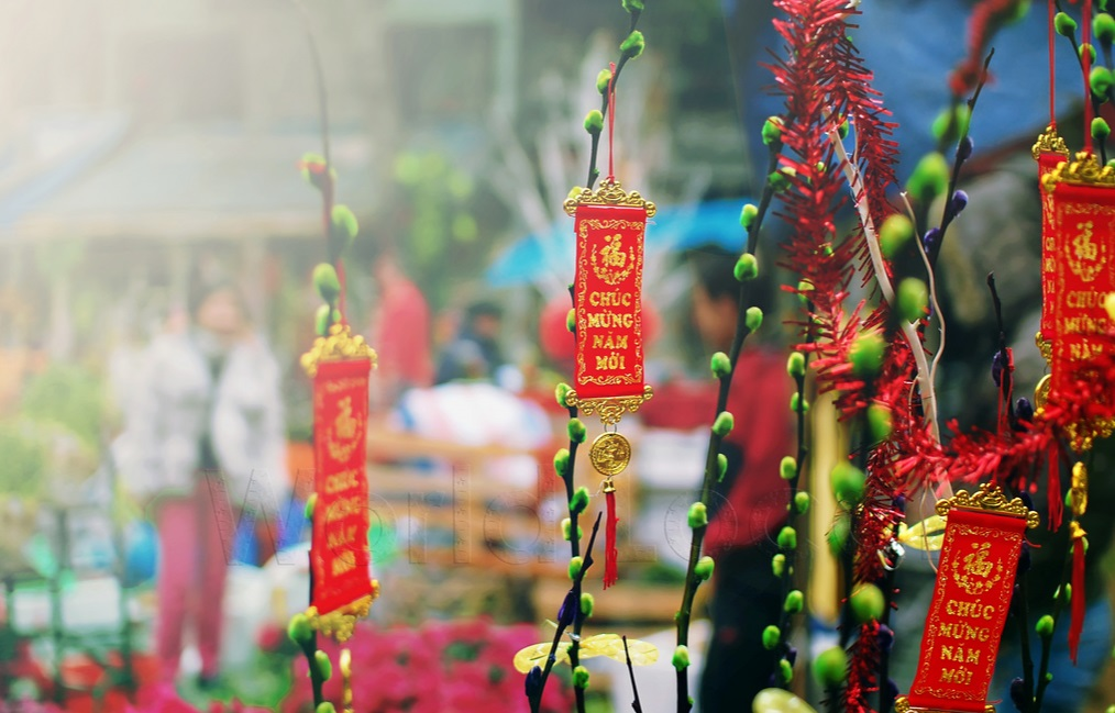 Interesting Festivals in Vietnam