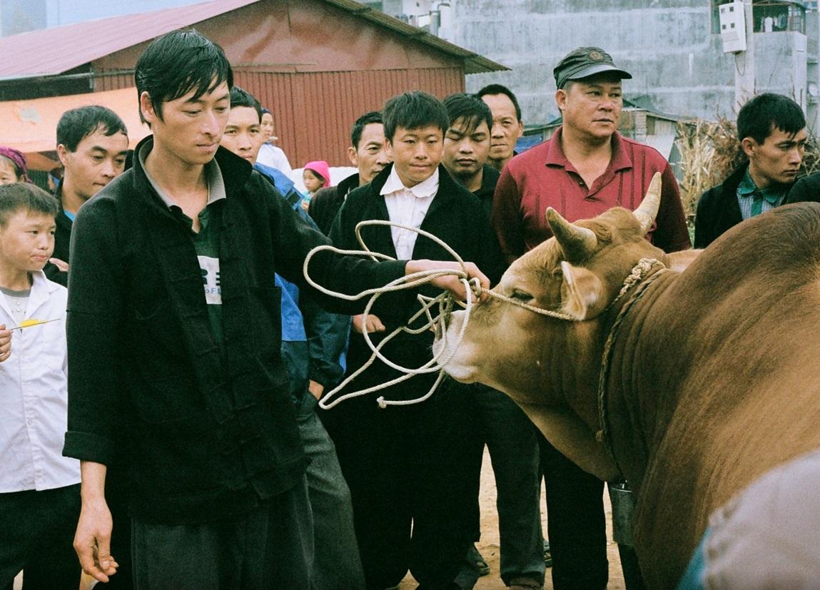 bac ha livestock section
