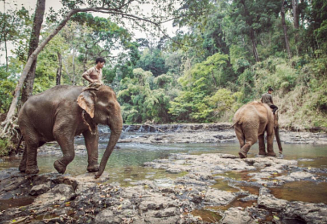 Cambodia Luxury Holiday to discover Phnom Penh city