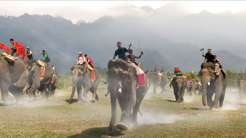 Interesting festivals to travel to Vietnam