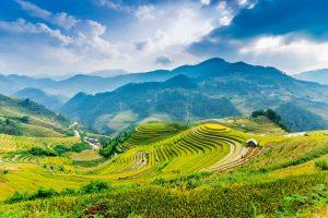Terraced Rice Fields Sapa Tour