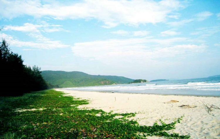 Ngoc Vung Island - Halong Bay Tour