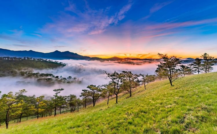 dalat - best time to visit vietnam and cambodia