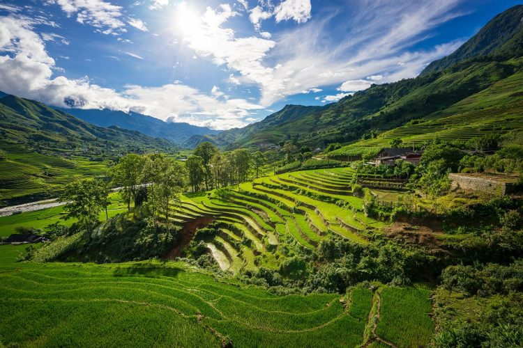 sapa - How to organize for summer vacation Vietnam Cambodia
