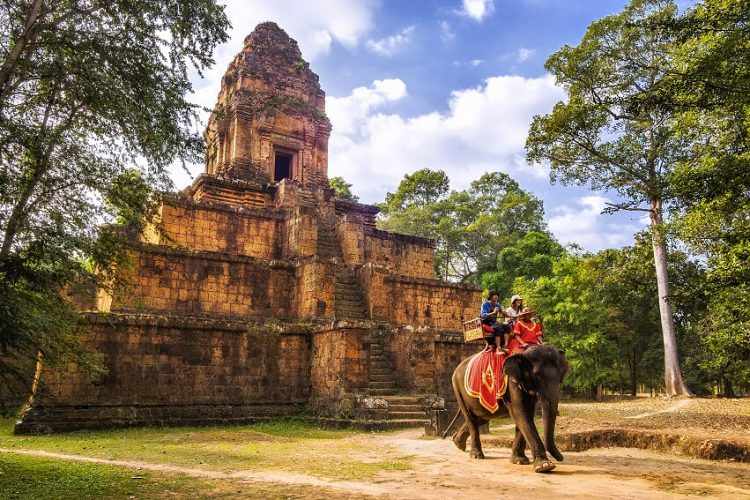 elephant-10+-Awe-Inspiring-Destinations-For-Cambodia-&-Vietnam-Trekking-Tours