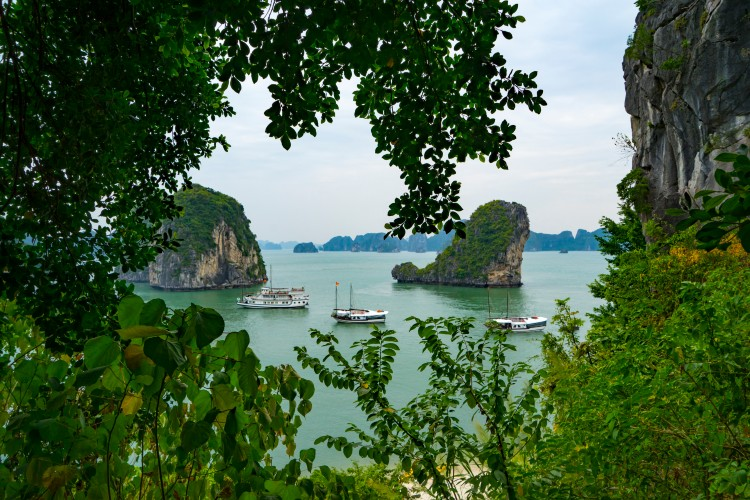 Step-by-step-guide-to-choose-a-perfect-Halong-bay-cruises