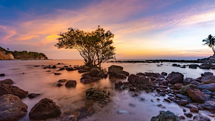 Top 5 Phu Quoc shopping places for not missing  Where to buy in Phu Quoc