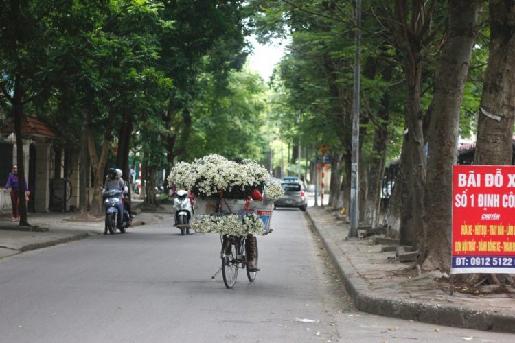 Everything you need to know about Hanoi weather