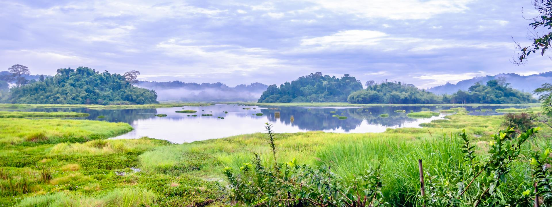Trekking in Nam Cat Tien National Park 3 Days