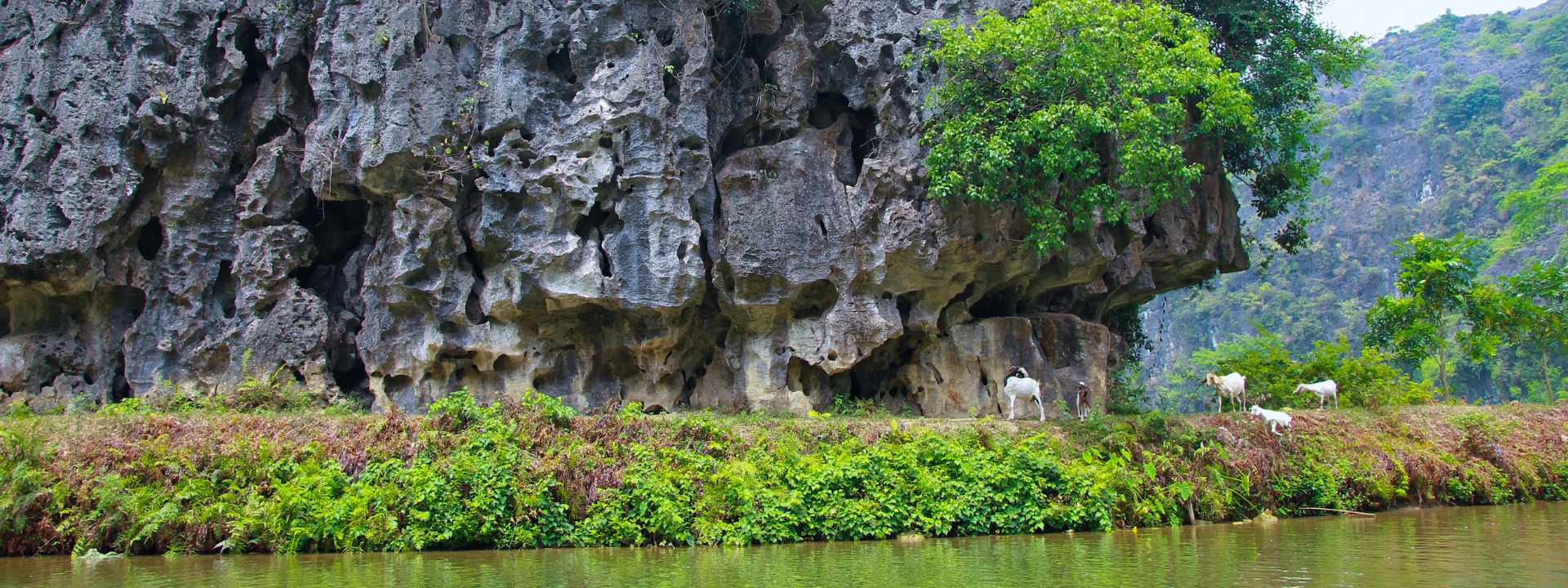 Fascinating Escape to Halong Bay & Ninh Binh 5 Days